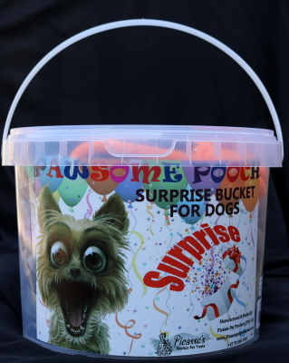 surprise-bucket-for-dogs